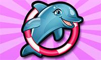 מופע הדולפינים שלי 6
