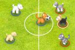 כדורגל חיות מחמד