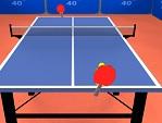 טניס שולחן פרו